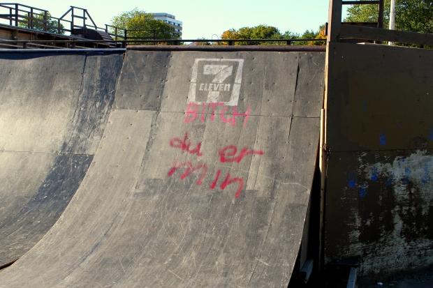 skateboard bane3
