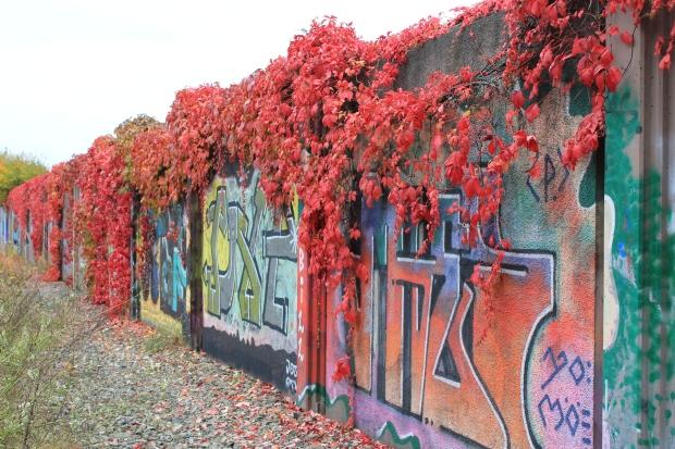 urban grafitti 2010 031