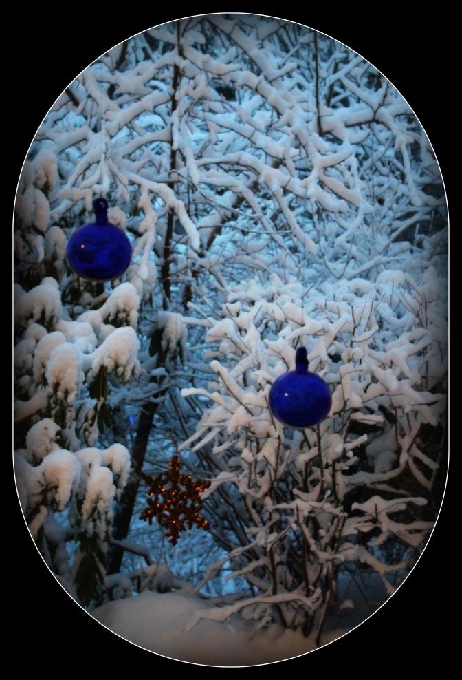winterwonderland2013