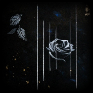 """Black Rose"", oil on canvas, 40 x 40 cm."